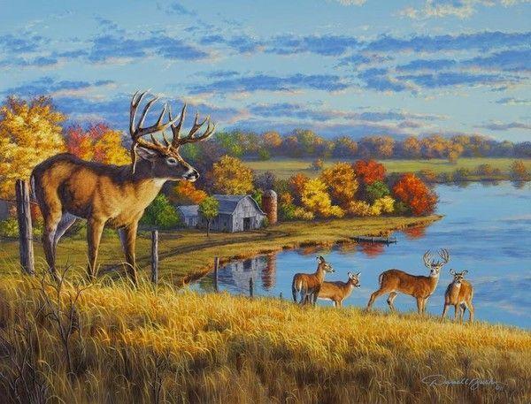 Cerfs en automne